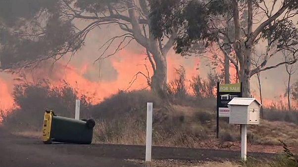 Austrália: Incêndios florestais na região de Queanbeyan aproximam-se de zonas residenciais