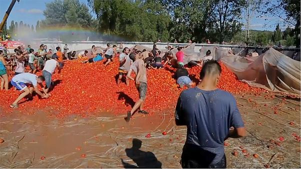 "Hundreds take part in ""tomato war"" in Chile"