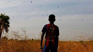 Human Rights Watch: 'El respeto a los derechos humanos en Sudán del Sur está entre los más bajos del continente y del planeta'
