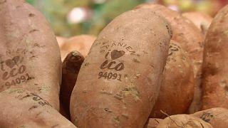 Etiquetas das frutas e legumes substituídos por impressão laser na casca