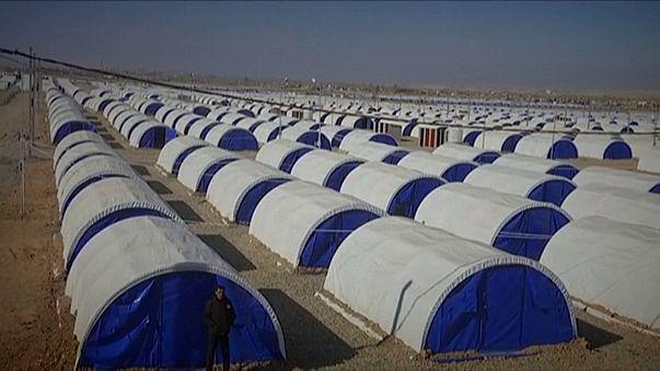 Batalla por Mosul dejará cerca de un cuarto de millón de desplazados, según ACNUR