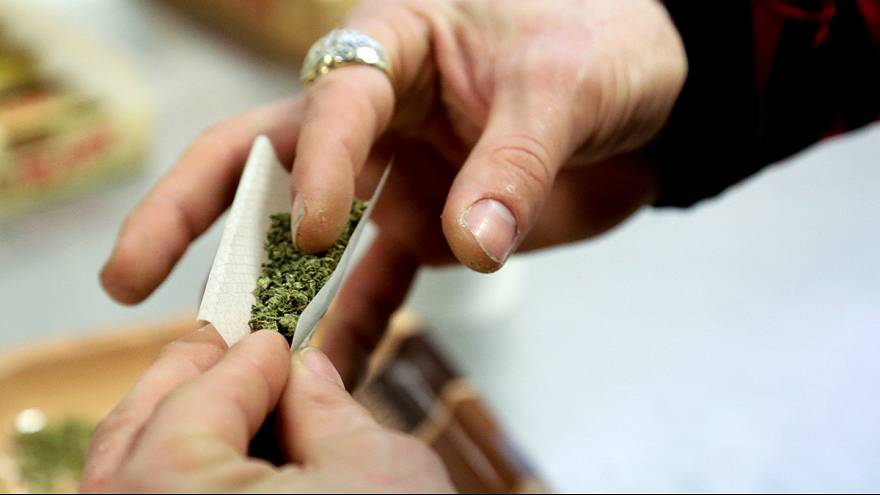 Dutch vote to legalise marijuana production