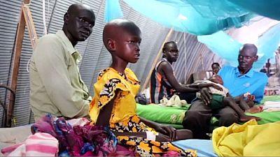 Afrique : quelque deux millions de réfugiés sont confrontés à une grave pénurie d'aide alimentaire (ONU)