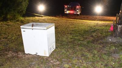 Three children, ages 1, 4, and 6 were found dead in an unplugged chest freezer in Suwanee County, Florida.