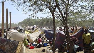 Cameroon expels over 500 Nigerians fleeing Boko Haram - UNHCR