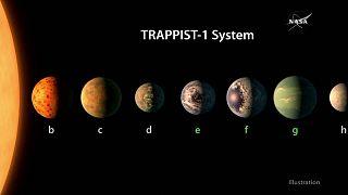 Sieben erdähnliche Planeten und ein Roter Zwerg