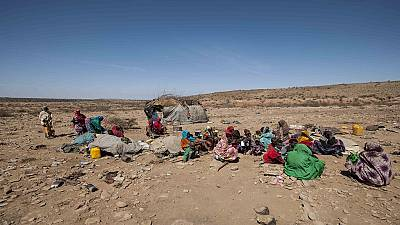 Pastoralists rely on hosts and aid to beat drought in Somalia