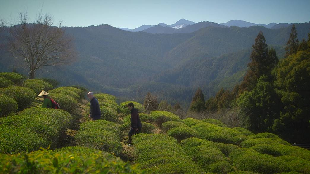 Postcards from Japan: hiking on the Kii Peninsula