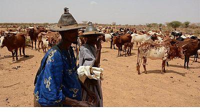 Mali : 20 morts dans des affrontements entre Peuls et Bambaras