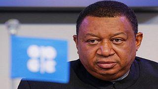 Nigeria : le ministre des Ressources pétrolières plébiscité par l'OPEP