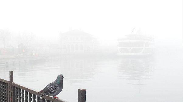 Nevoeiro paralisa Istambul