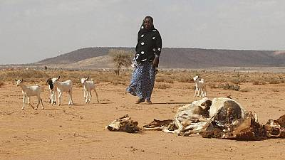 Somali president appeals for urgent food aid to avert famine