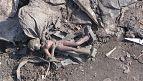 La sécheresse menace 1,5 million de personnes en Somalie [no comment]