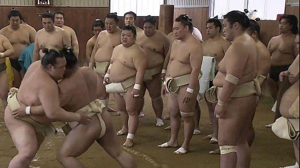 Japão: Campeão de Sumo prepara defesa do título