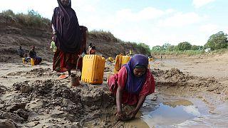 Somalie : 110 personnes mortes de faim ces dernières 48 heures (gouvernement)