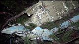 Rebeldes sirios afirman haber derribado un avión del Ejército que cayó en Turquía