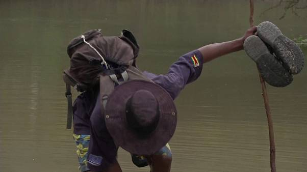 Зимбабве просит помощи из-за наводнений и гусениц