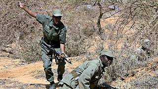 Mali : 11 morts dans une attaque contre l'armée