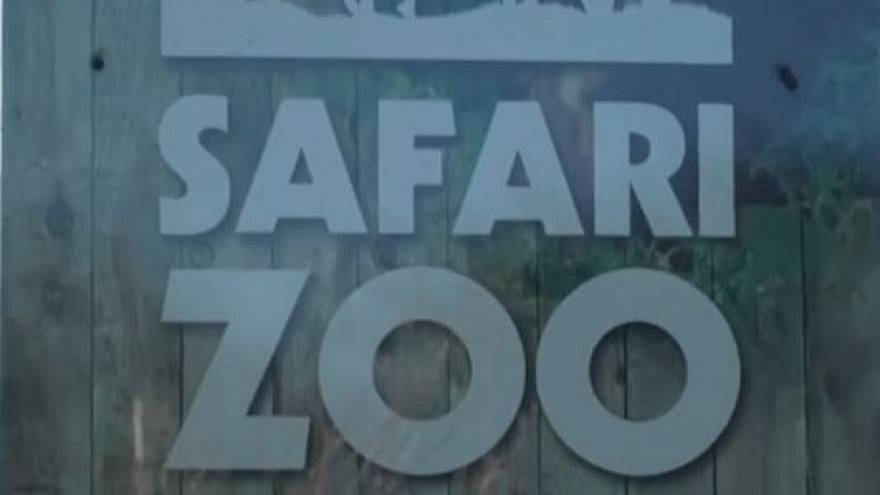 UK zoo boss loses licence after 500 animal deaths
