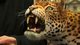 Leopardo robotizado invade Trafalgar Square
