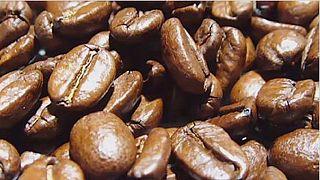 Rwanda: hausse de 64 % du prix d'achat du café