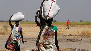 Famine au Soudan du Sud: les humanitaires inquiets du prix des visas