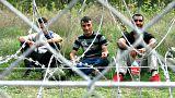 Nemzetközi kutatás a migránsokat érő és az általuk elkövetett bűncselekményekről