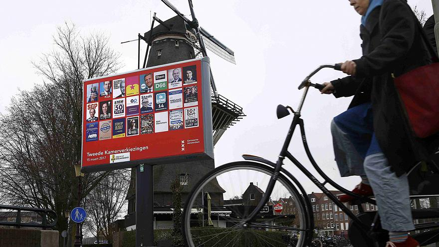 Hollanda'da halk sandık başında