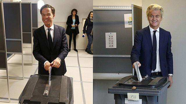 Hollanda genel seçimler için sandık başında
