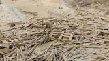 Pérou : une femme échappe par miracle à une coulée de boue