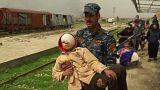 Iraque: 255 mil deslocados em Mossul