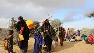 Somalia: UN opens drought operations centre in Baidoa to tackle hunger