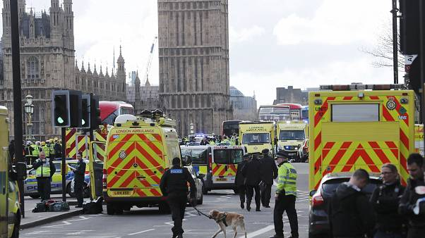Car attacker mows down crowds and stabs policeman outside UK parliament