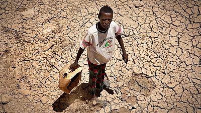 Tour d'horizon sur la crise alimentaire en Afrique de l'Est, la pire depuis 1945
