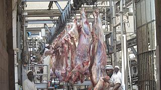 Ethiopia's $75m Abattoir set to be operational next month
