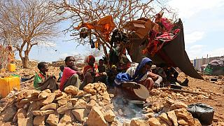 Finland allocates $20 million to famine-hit African countries