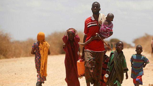 عشرون مليون شخص يتهددهم الجوع خلال الستة أشهر القادمة