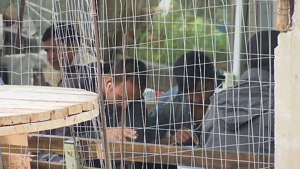 Австрия и Венгрия противятся распределению беженцев по ЕС