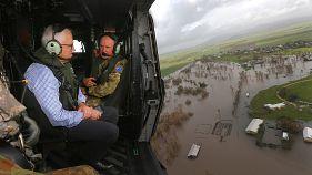 Australian cyclone brings close encounters with wildlife
