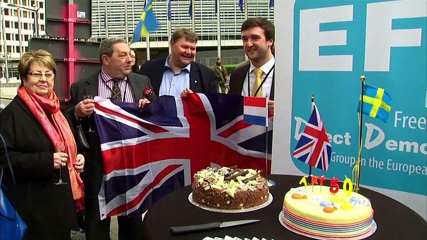 """Eurodeputados britânicos celebram """"Brexit"""""""