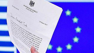 Brexit Bakanı Davis: 40 yıllık tecrübeyi iki yılda değiştiremeyiz