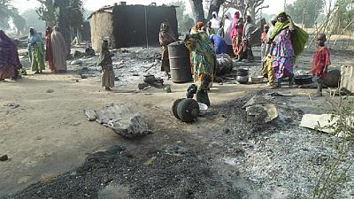 Dog dies in blast after fighting female suicide bomber in Nigeria