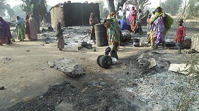 Dog dies in blast after fighting female suicide bomber in Nigeria