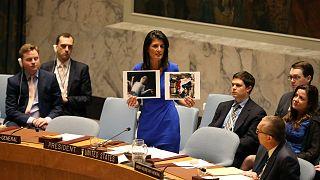 جلسه فوری شورای امنیت درباره حمله شیمیایی در سوریه