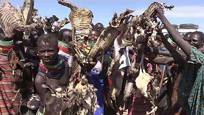Kenya : les mirages de la région du Turkana à l'épreuve de la sécheresse