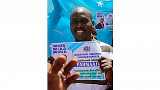 """Somaliland court jails journalist two years for """"anti-national activity"""""""