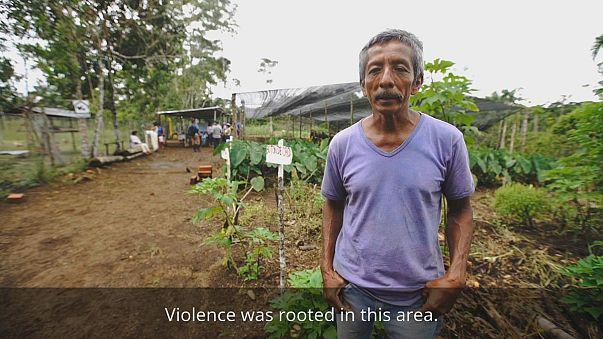 La Pedregosa: turning blood fields into green fields