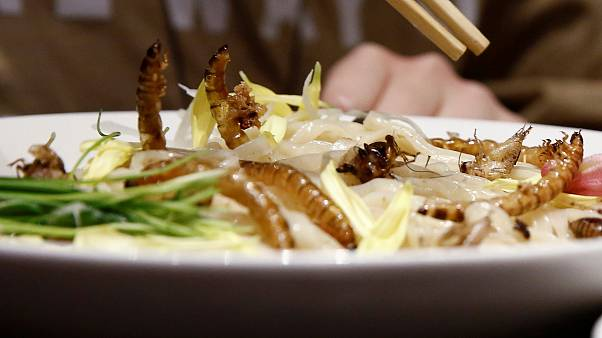 Insect noodles on the menu in Tokyo