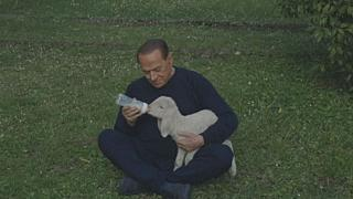 Berlusconi features in vegetarian video campaign and 'saves' five lambs