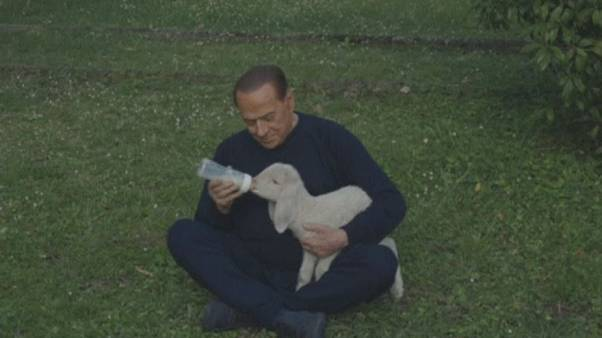 """""""Vegetarische Ostern"""": Berlusconi (80) rettet Lämmer"""
